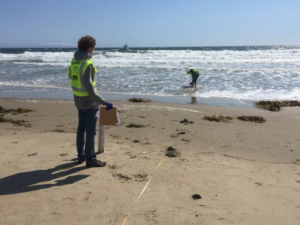 Sampling Coal Oil Point on May 22, 2015.