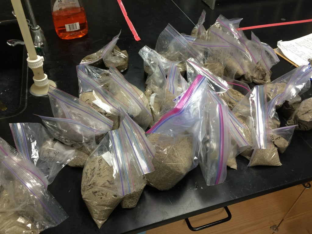 Sand samples from across the Southern California Bight.